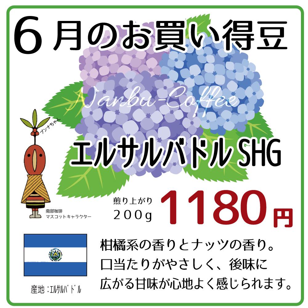 【今月のお買い得豆】6月は「エルサルバドルSHG」